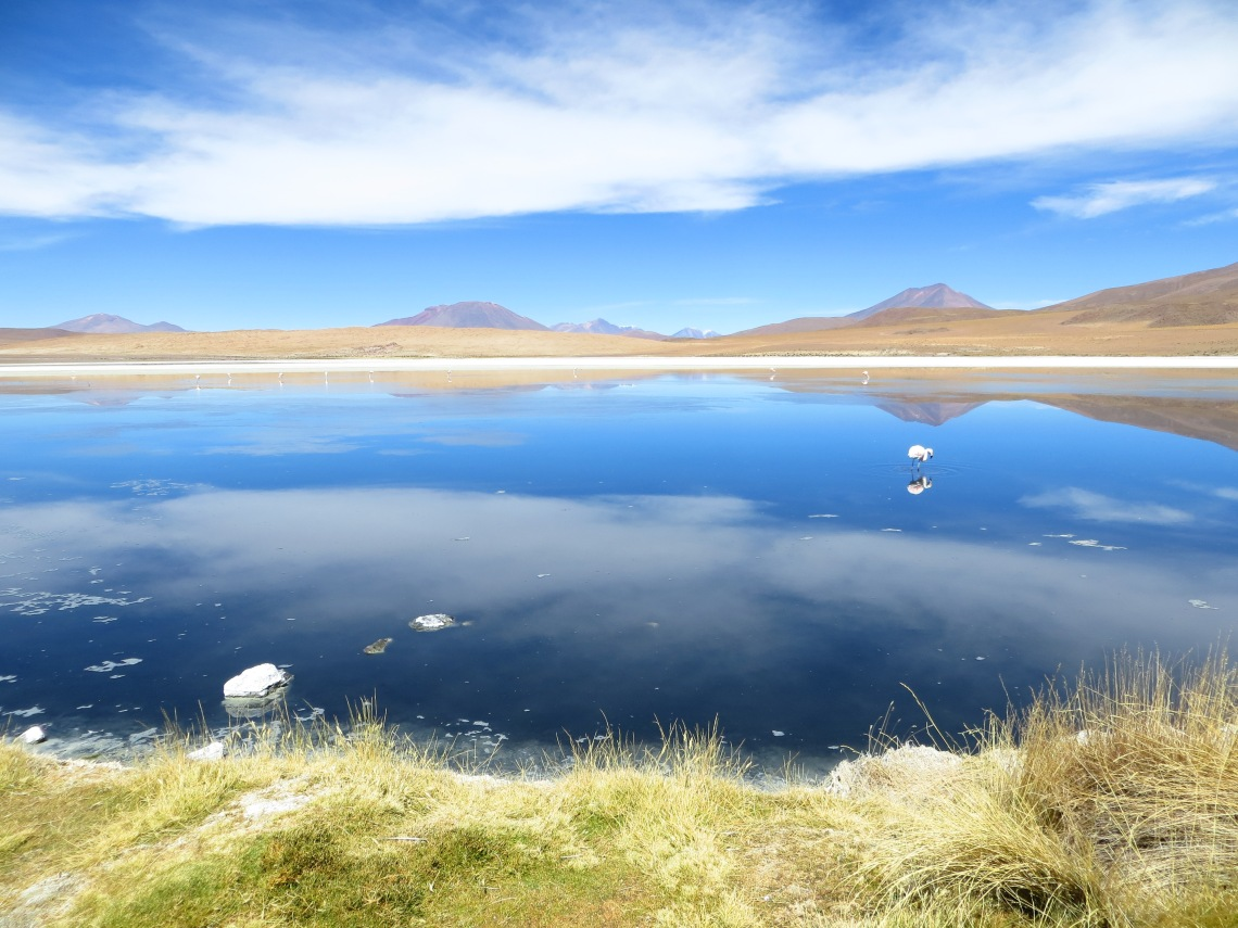 Lake in Eduardo Avaroa National Park, Atacama Desert in Uyuni, Bolivia