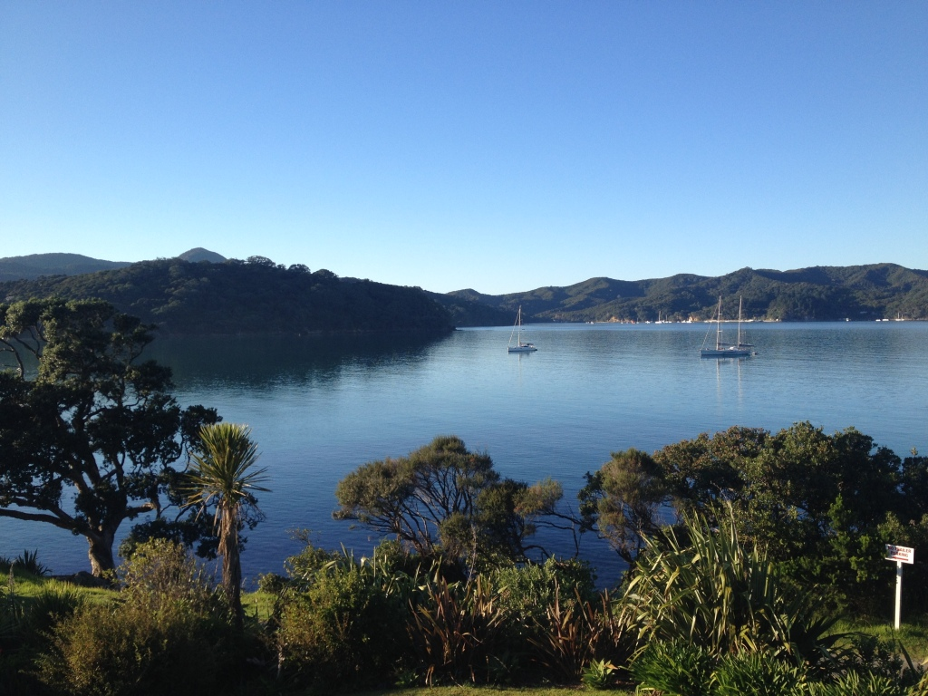Great Barrier Island. Just a few hours via boat from Auckland