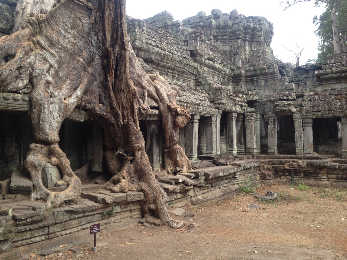Love the merge of temples and nature