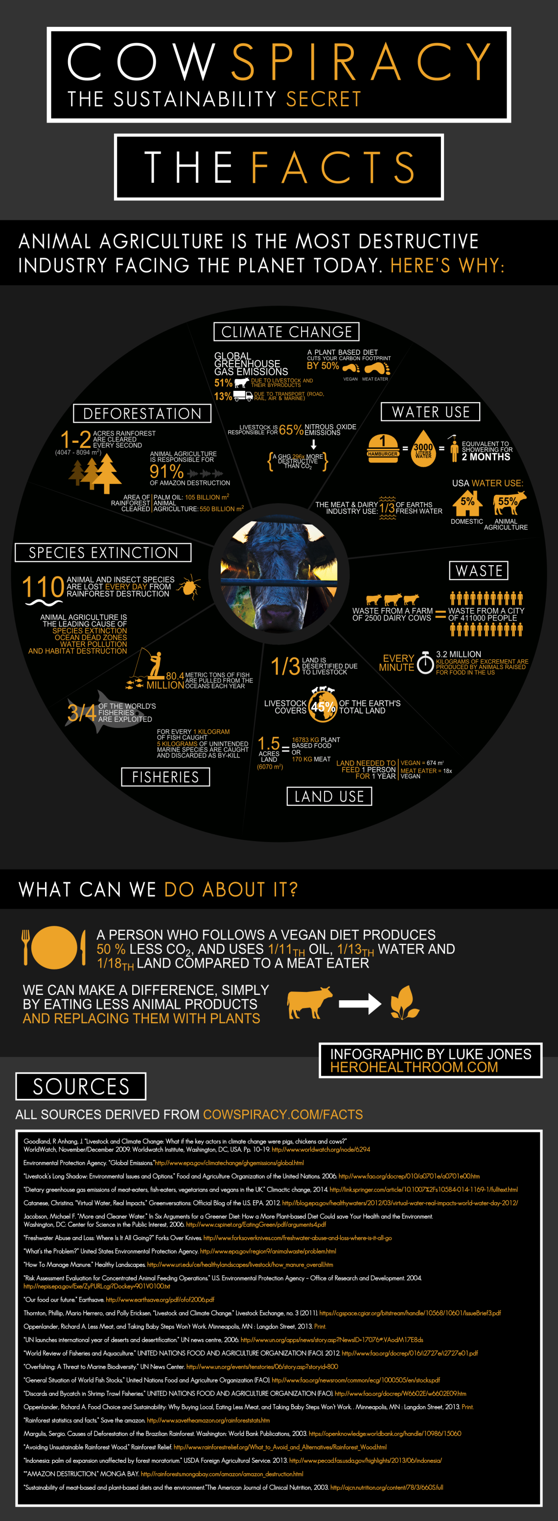 Cowspiracy-Infographic-Metric.png