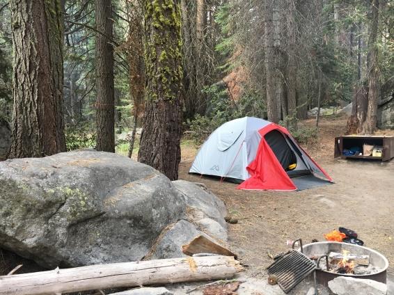 Camping Yosemite